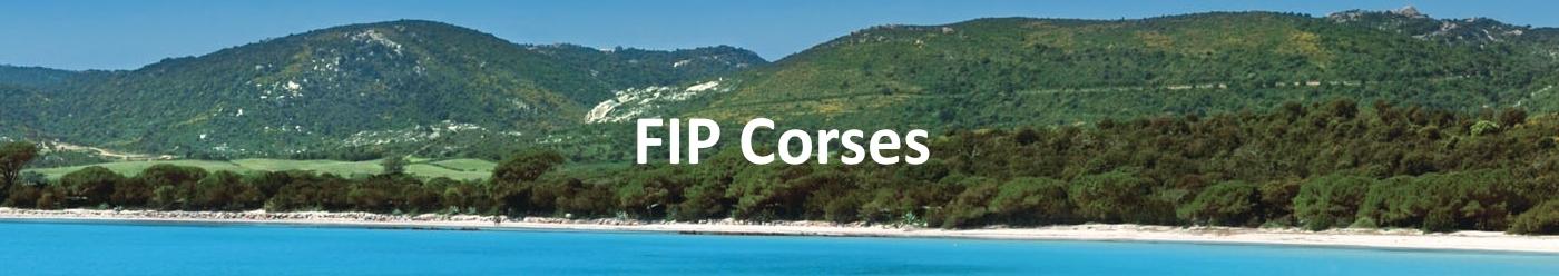 Les FIP Corses
